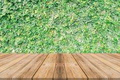 Drewnianej deski pusty stół przed drzewnym tłem Perspectiv obrazy stock