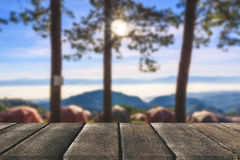 Drewnianej deski pusty stół przed drzewnym tłem Perspectiv zdjęcie stock