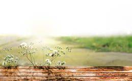 Drewnianej deski pusty stół przed ranków promieniami fotografia royalty free