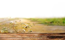 Drewnianej deski pusty stół przed ranków promieniami Obrazy Stock