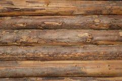 Drewnianej tekstury rżnięty drzewny bagażnik obraz royalty free
