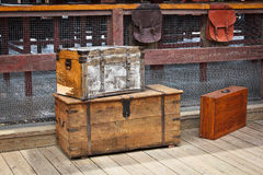Wooden trunks Zdjęcia Stock