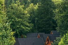 Drewniani bel kabin dachy w lesie Obraz Stock