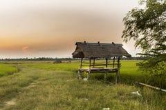 Drewniani chałupa ryż pola Zdjęcia Royalty Free