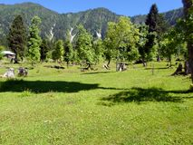 Drewniani domy w krajobrazie i dolinie Fotografia Royalty Free