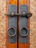 Drewniani drzwi Obrazy Royalty Free