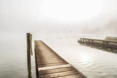 Drewniani jetty juts w Traunsee jezioro, zdjęcia royalty free