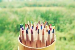 Drewniani kolorowi ołówki na zielenieją ogrodowego tło obrazy royalty free