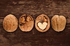 drewniani orzech włoski tło orzech włoski Fotografia Royalty Free