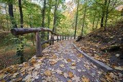 Drewniani poręcze w parku zdjęcie stock