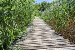 Drewniani przejścia przez jezior Fotografia Royalty Free