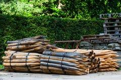 Drewniani słupy używać dla ono fechtuje się Obrazy Stock