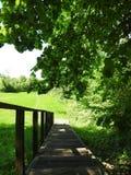 Drewniani schodki iść na wzgórze wierzchołku, Lithuania zdjęcie royalty free