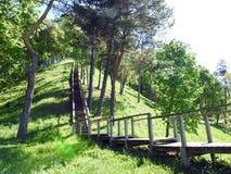 Drewniani schodki iść na wzgórze wierzchołku, Lithuania obraz royalty free