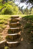 Drewniani schodki robić od drzewnych bagażników zdjęcia stock