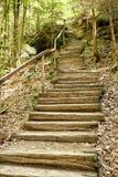 Drewniani schodki z drewnianym poręczem do stromego zbocza fotografia royalty free