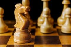 Drewniani szachowi biel kawałki, rycerz w ostrości zbliżeniu Zdjęcia Royalty Free