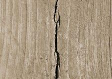 Drewniani tekstury brązu neutralny kolory Obrazy Stock