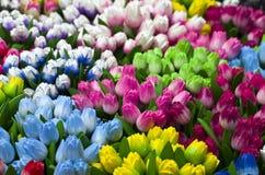 Drewniani tulipany przy turystycznymi pamiątkami jak. Obraz Royalty Free