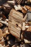 Drewniani układy scaleni - makro- strzał Zdjęcie Stock