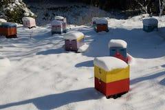 Drewniani ule zakrywający w śniegu zdjęcia stock