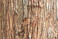 Drewniany ścienny tło Zdjęcia Stock