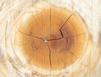 Drewniany ścienny tekstury tło Zdjęcie Royalty Free