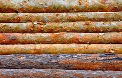 Drewniany beli ogrodzenie Zdjęcia Royalty Free