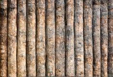 Drewniany beli tło fotografia royalty free