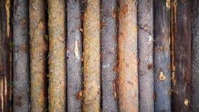 Drewniany beli tło textured deseniową deski ścianę z winiety ramą Zdjęcie Royalty Free