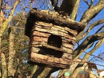 drewniany bird& x27; s gniazdeczko Zdjęcia Stock