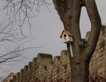 Drewniany birdhouse na drzewie w jesień parku obraz royalty free