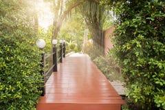 Drewniany brige w zieleń parku z promieniem światło Obraz Stock