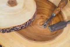Drewniany carver Obraz Royalty Free