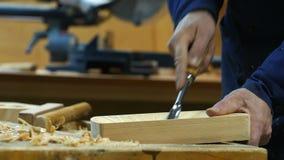 Drewniany cyzelowanie - istota ludzka wręcza cyzelować kawałek drewno zbiory