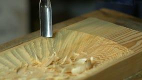 Drewniany cyzelowanie - istota ludzka wręcza cyzelować kawałek drewno zdjęcie wideo
