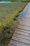Drewniany deska most przez marshy gruntowe pobliskie lecznicze plaże Nin i błota, Croatia, Adriatic zdjęcie stock