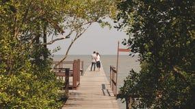Drewniany dok w Lasowy Prowadzić morze Fotografia Royalty Free