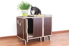 Drewniany dom dla kotów Obrazy Stock