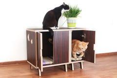 Drewniany dom dla kotów Zdjęcie Stock