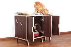 Drewniany dom dla kotów Fotografia Royalty Free