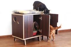 Drewniany dom dla kotów Fotografia Stock