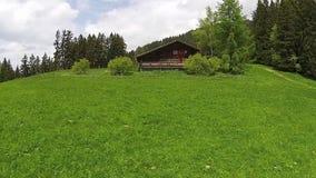 Drewniany dom na zielonego wzgórza lesie w tle, Leysin alps zbiory wideo