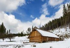 Drewniany dom w lesie Zdjęcie Royalty Free