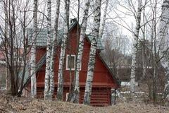 Drewniany dom wśród brzozy wiosny obraz stock