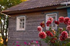 Drewniany dom z rze?bi?cymi okno w Vologda Rosja Rosjanina styl w architekturze Nieociosany rosjanina dom z ogr?dem zdjęcie stock