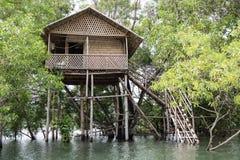 Drewniany domek na drzewie na rzece Zdjęcie Royalty Free