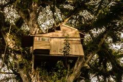 Drewniany domek na drzewie w dużym drzewie Zdjęcia Stock
