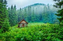 Drewniany domowy blokhauz przy zieloną halizną w górach lasowych Zdjęcia Royalty Free