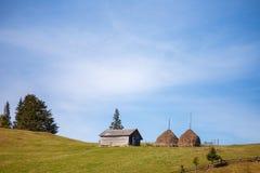 Drewniany domowy pobliski duży przeprowadza żniwa na nieba tle Fotografia Stock